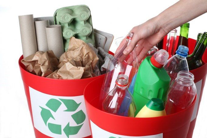 organise waste collection