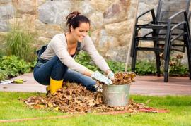 Garden Clearance and Maintenance Tips To Use In Barnet