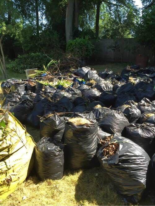 W1 garden clearing Soho